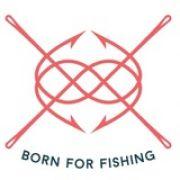 Интернет магазин fish-fish.com.ua