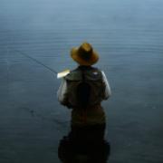 fish-fish аватар